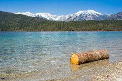 Wood log on lake Eibsee and Alps mountains Stock Images