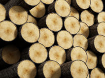 Wood log stack Stock Photos