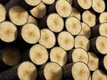 Wood log stack. Arranged wood log stack background Stock Photos