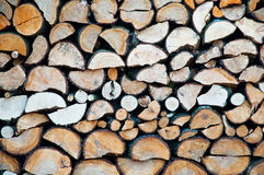 Wood Log Texture. Texture of many wood logs Stock Photos
