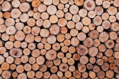 Wood log texture background Royalty Free Stock Photos