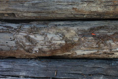 Wood Log Texture Background with Shade. Royalty Free Stock Photos