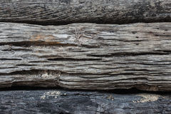 Wood  Log Texture Background with Shade. Royalty Free Stock Images