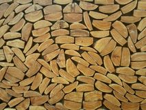 Wood log. Texture tree backgroung pattern abstract Royalty Free Stock Photography