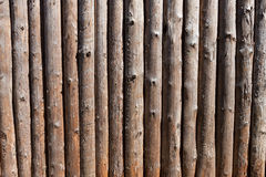Wood log wall Stock Images