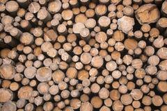 Wood log Stock Photo