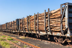 Wood Logging Poles Train. Train loaded with cut tree wood poles logging traveling to hardware paper pulp wood mills stock photography