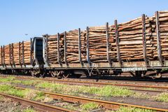 Wood Logging Poles Train Stock Image