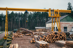 Wood logging, sorting, transportation and processing on sawmill Stock Images