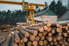 Wood logging, sorting, transportation and processing on sawmill. Truck crane for timber transportation moving and sorting wood materials on the sawmill Royalty Free Stock Photos