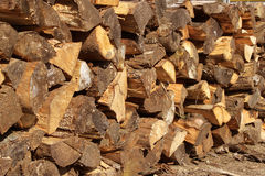 Wood logs. Cut in stacked for firewood Royalty Free Stock Images