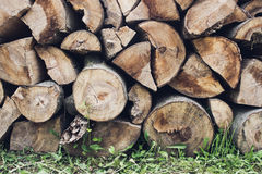 Wood logs background Royalty Free Stock Images