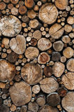 Wood logs background Stock Photography