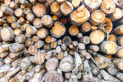 Wood logs background Royalty Free Stock Photos