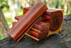 Wood logs of Burmese rosewood. Exotic wooden beautiful pattern for crafts or background stock images