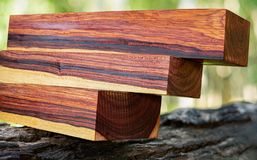 Wood logs of Burmese rosewood. Exotic wooden beautiful pattern for crafts or background stock image