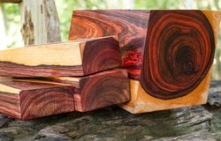 Wood logs of Burmese rosewood. Exotic wooden beautiful pattern for crafts or background royalty free stock photos