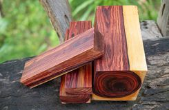 Wood logs of Burmese rosewood. Exotic wooden beautiful pattern for crafts or background royalty free stock images