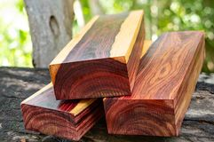 Wood logs of Burmese rosewood. Exotic wooden beautiful pattern for crafts or background royalty free stock photography