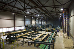 Wood Logs on Conveyor System in Sawmill Stock Photography