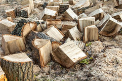 Wood logs for fire Royalty Free Stock Photo