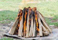 Wood logs in fire, outdoor fire for barbecue, colored flames, close up. Stock Image