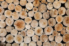 Wood logs for industry Royalty Free Stock Photos