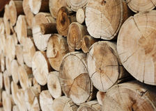 Wood logs for industry Stock Images
