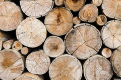 Wood logs for industry Royalty Free Stock Photo