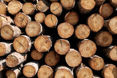 Wood logs Royalty Free Stock Photo