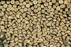 Wood logs. A pile of wood logs in close-up royalty free stock photography