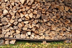 Wood logs ready for winter Royalty Free Stock Images
