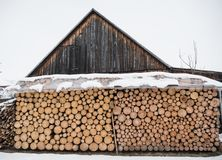 Wood logs ready for winter. Pile of wood logs ready for winter Royalty Free Stock Images