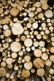 Wood logs storage Royalty Free Stock Image