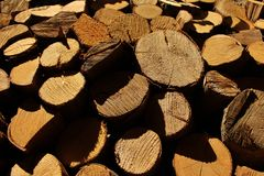 Wood logs wall Stock Image