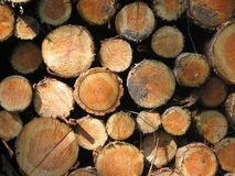 Wood, Lumber royalty free stock photography