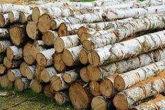 Wood, Lumber, Tree, Trunk stock photo
