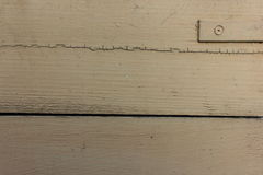 wood målad textur Royaltyfria Foton