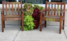 Wood möblemang och växter som annonserar gröna inredningar, grönt samvetehem, i stadens centrum Saratoga Springs, New York, 2018 royaltyfri foto