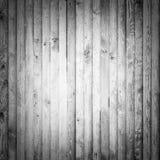 Wood maple planks Royalty Free Stock Image