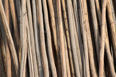 Wood material placed in order Stock Image