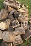 Wood materiel Arkivfoto