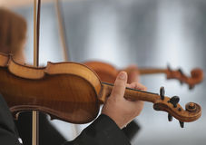 Wood melodies stock photos