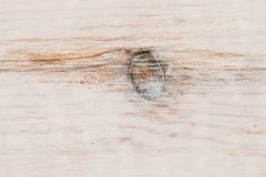 Wood modell Arkivfoton