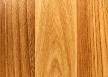 Wood modell - bakgrund Royaltyfri Fotografi