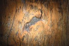 Wood modell för bakgrund Royaltyfri Fotografi