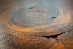 Wood modell och textur Arkivfoton
