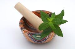 Wood mortar and pestle Stock Image