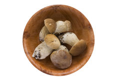 Wood mushrooms in a round wooden plate. Stock Photography