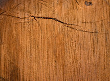Wood background natural Royalty Free Stock Images
